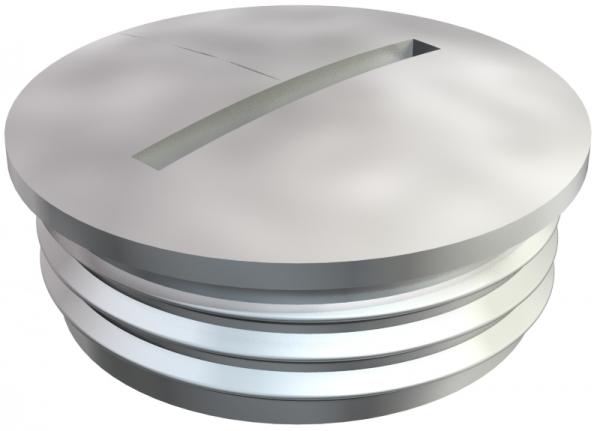 2090201 - OBO BETTERMANN Заглушка, латунь PG21 (168 MS PG21).